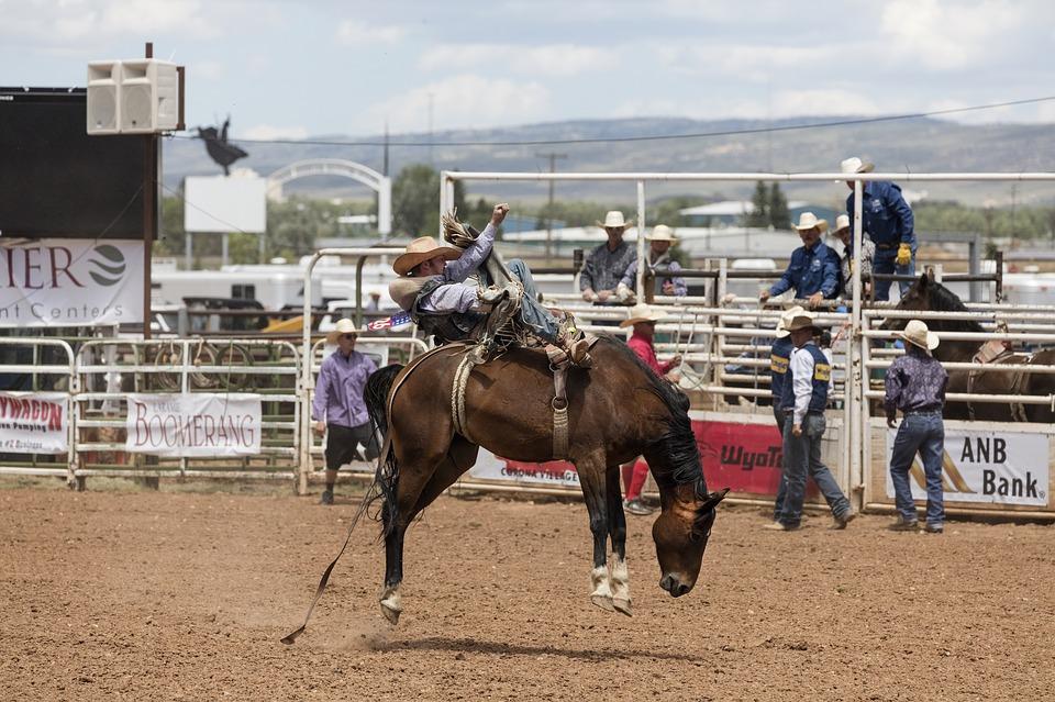 cowboys-1235377_960_720